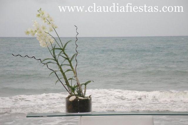 Claudiafiestas47